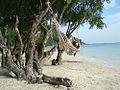 Beach Phangan Island.jpg