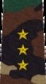 Belarus MIA—11 Senior Ensign rank insignia (Camouflage).png