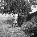 Belič Marija, stara 65 let, Bržani, klesti veje za na ogenj 1950.jpg