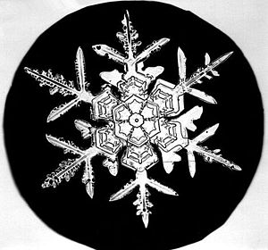 "A picture of a Snow Crystal takenA picture of a Snow Crystal taken by Wilson Bentley, ""The Snowflake Man."" (Photo credit: Wikipedia) by Wilson Be..."