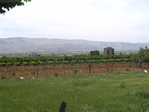 Deng tanaman a ubas king Zahle, king kalibudtan ning Bekaa Valley