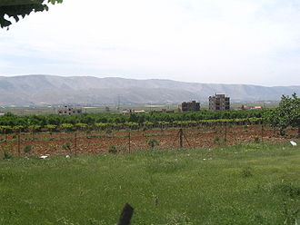 Agriculture in Lebanon - Vineyards near Zahlé, in the central Beqaa Valley.
