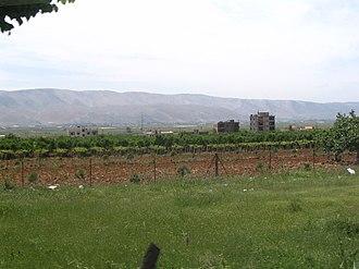 Zahlé District - Vineyards