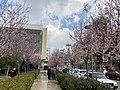Bergama 03-4-21.jpg