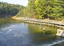 Big Sable River fishing2.jpg