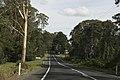 Bilpin NSW 2758, Australia - panoramio (32).jpg