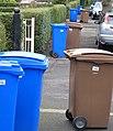 Bin day, Cranmore Avenue, Belfast - geograph.org.uk - 715856.jpg