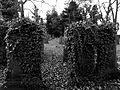 Bingley Churchyard.jpg