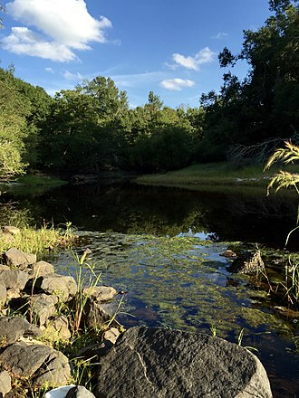 Black River (South Carolina) - The Black River at Kingstree, South Carolina