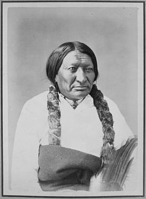 Alexander Gardner (photographer) - Portrait of Ta-Tan-Kah-Sa-Pah (Black Bull), 1872