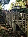 Blackwater Falls State Park WV 32.jpg