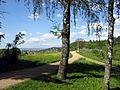 Blick vom Mayenrainweg in Au Richtung Freiburg.jpg