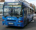 Bluestar 504.JPG