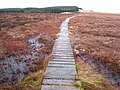 Boardwalk on the Pennine Way - geograph.org.uk - 644449.jpg