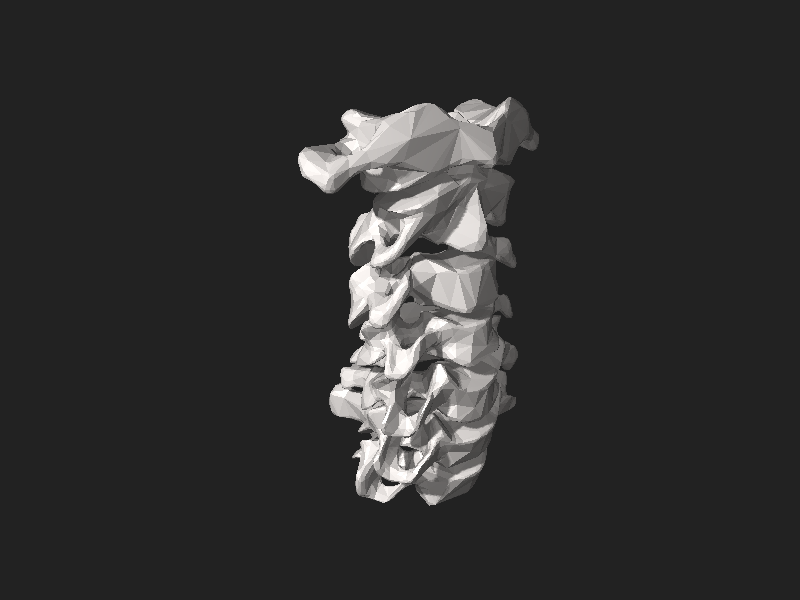 קובץ:BodyParts3D Cervical vertebrae.stl