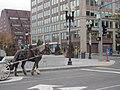 Boston (2019) - 739.jpg
