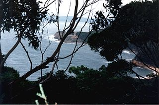 Bouddi National Park Protected area in New South Wales, Australia
