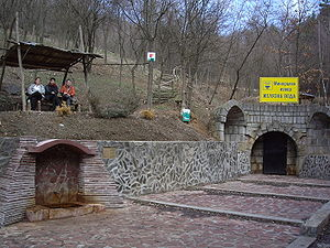 Mineral spring - A chalybeate (iron-laden) mineral spring at Breznik, Bulgaria.