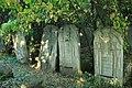 Briceni Jewish Cemetery 1.JPG
