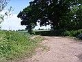 Bridleway near Whiston - geograph.org.uk - 454149.jpg