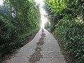 Bridleway to Macknade Farm - geograph.org.uk - 1383159.jpg