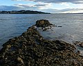 Broughty Rock and the Firth of Tay - geograph.org.uk - 6000071.jpg