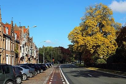 Hoe gaan naar Komvest met het openbaar vervoer - Over de plek