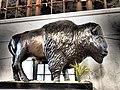 Buffalo in the Buffalo Central Terminal.jpg