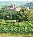 Burg Neuleiningen - panoramio (1).jpg