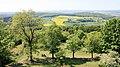 Burgruine Frauenberg Aussicht 1.jpg