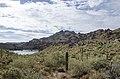 Butcher Jones Trail to Pinter's Point Loop, Tonto National Park, Saguaro Lake, Ft. McDowell, AZ - panoramio (64).jpg