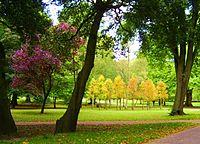 Bute Park, Cardiff.jpg