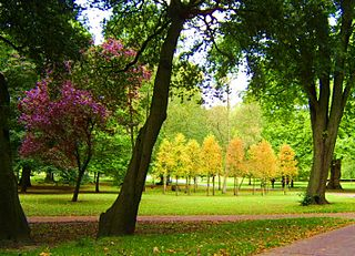 Bute Park park in Cardiff, Wales