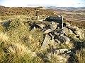 Butt, Mount Bouie - geograph.org.uk - 1577340.jpg