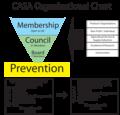 CASA Organizational Structure.png