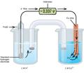 CNX Chem 17 03 GalvanCu.png
