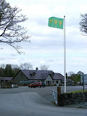 Flag of Caernarfonshire - The Caernarfonshire flag flying at Inigo Jones Slate Works, Groeslon