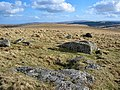 Cairn remains on White Ridge - Dartmoor - geograph.org.uk - 149621.jpg