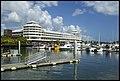 Cairns Marina-02 (23513469635).jpg