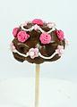 Cake Pops (8445856866).jpg