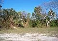 Campsite - panoramio.jpg