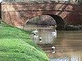 Canal bridge near Aylestone Mill Lock - geograph.org.uk - 356191.jpg