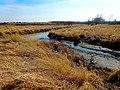 Capital Springs State Recreation Area - panoramio.jpg