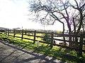Captain's Pond, Llanteg - geograph.org.uk - 1161567.jpg