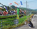 Carp windsock crosses the river こいのぼりの川渡し - panoramio.jpg