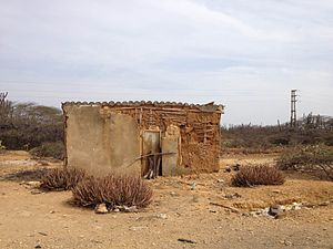 Paraguana xeric scrub - Abandoned wattle and daub house on the Paraguaná Peninsula