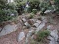 Castell de Requesens 2011 16.jpg