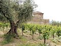 Castello di Amorosa Winery, Napa Valley, California, USA (6031112538).jpg
