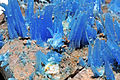 Chalcanthite, limonite 3.JPG