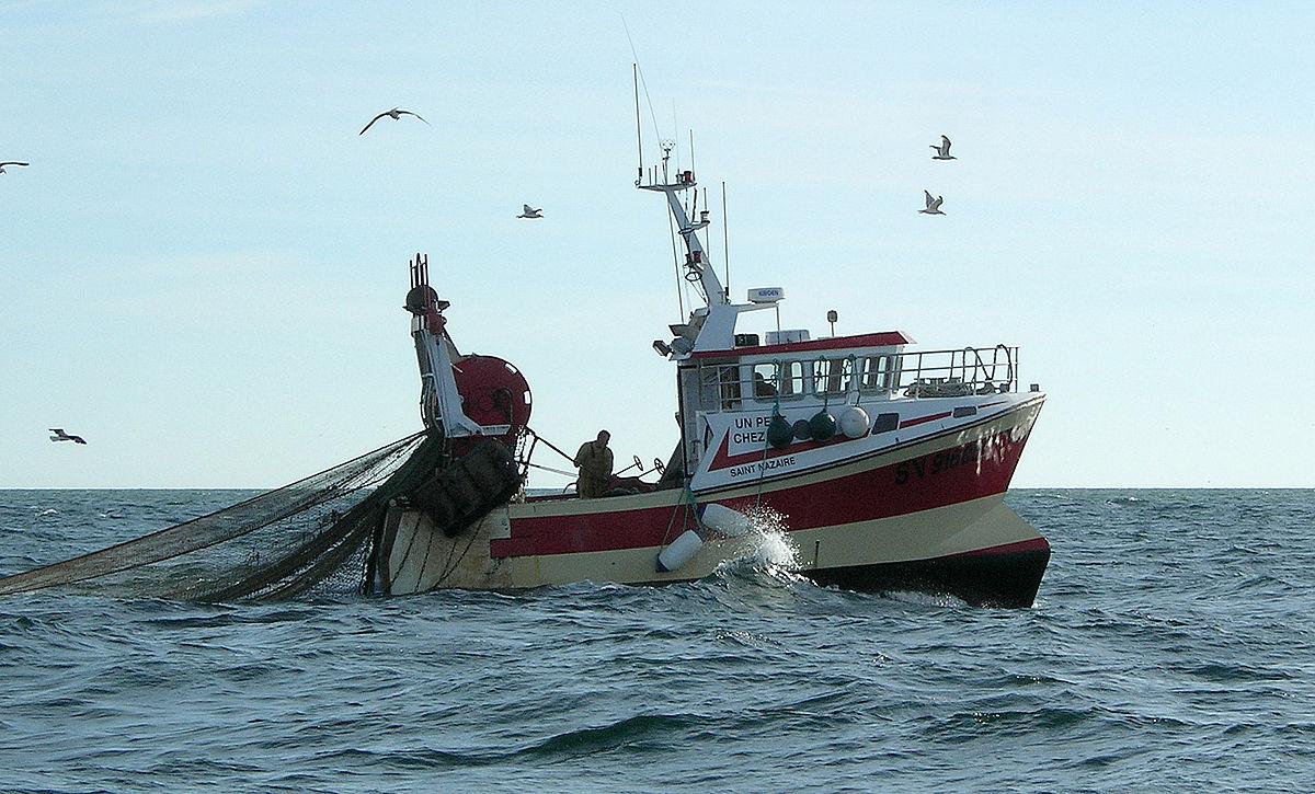 gran botín redes de pesca